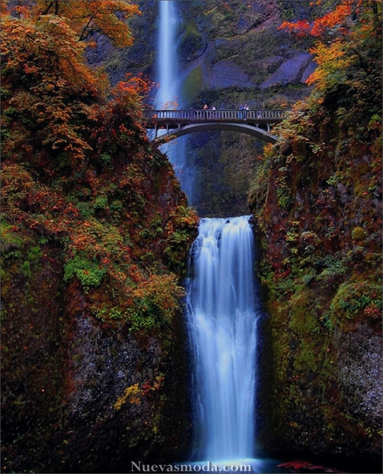 Cataratas de oregon