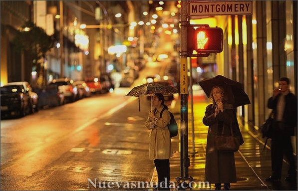 Interesantes fotos de Atmospheric in Rain (6)