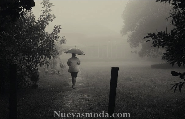 Fotos interesantes de Atmospheric in Rain (21).