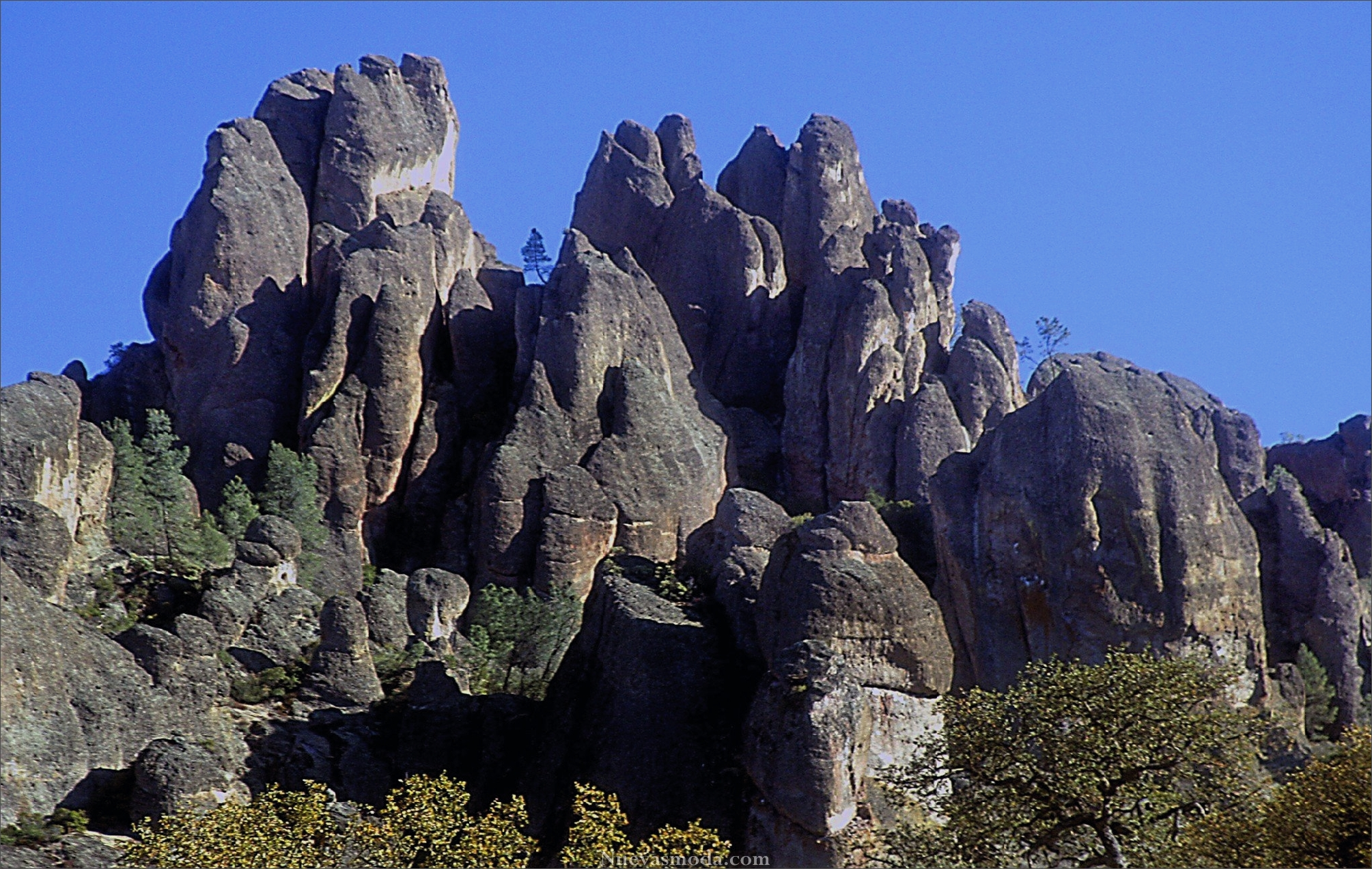 lat-pinnacles-la0013511957-20131124