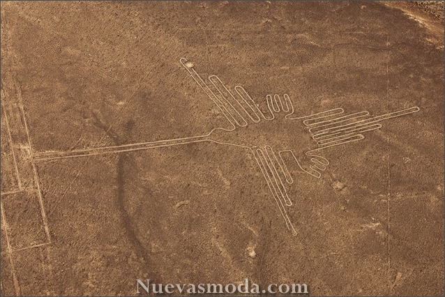 Nazca lines aliens - Sea Bird
