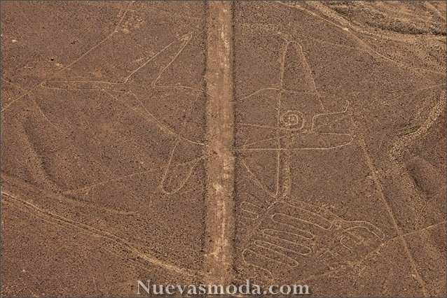 Nazca lines aliens - Whale