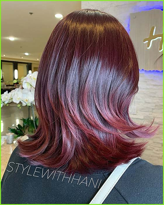 Burgundy Layered Hair Idea