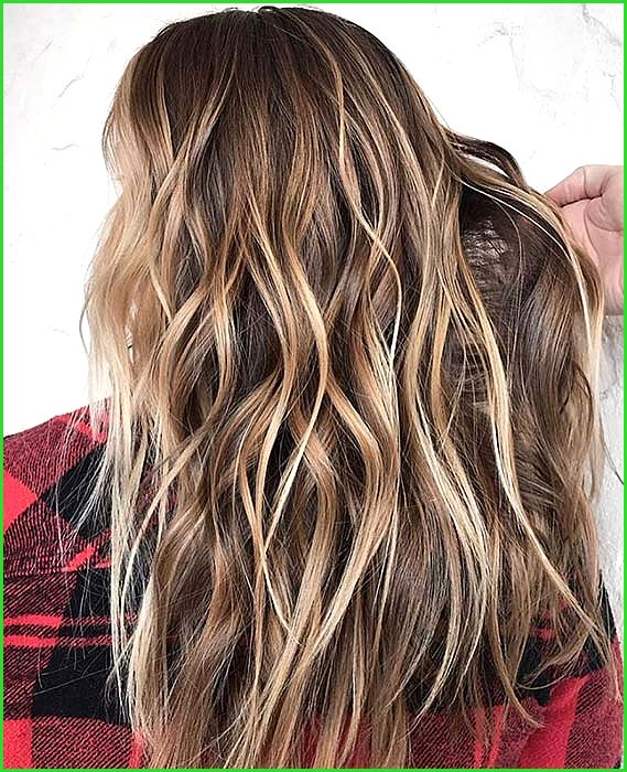 Chestnut Hair with Blonde Highlights